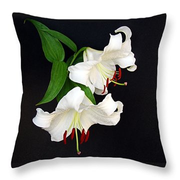 Newly Opened Throw Pillow by Nick Kloepping