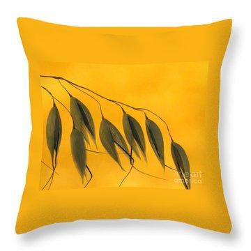 Next Year Crop Throw Pillow by Joe Jake Pratt