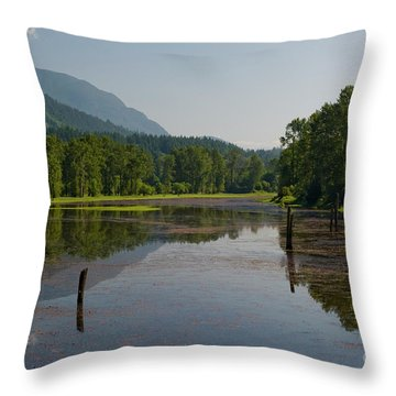 Nicomen Slough 2 Throw Pillow by Rod Wiens