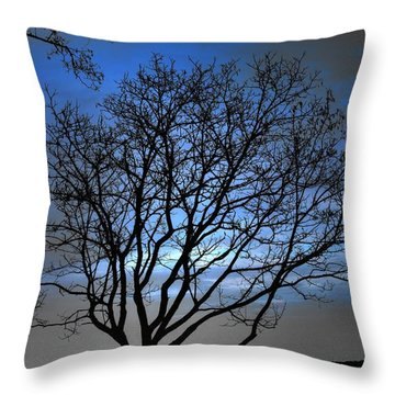 Night On The River Throw Pillow by Dan Stone