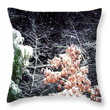 Night Snow 2 Throw Pillow by Sandi OReilly