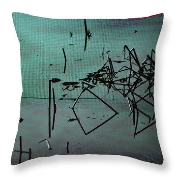 Nightfall Over The Wetlands Throw Pillow by Bonnie Bruno