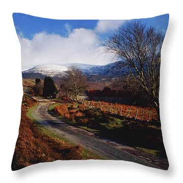 Nire Valley Drive, County Waterford Throw Pillow by Richard Cummins