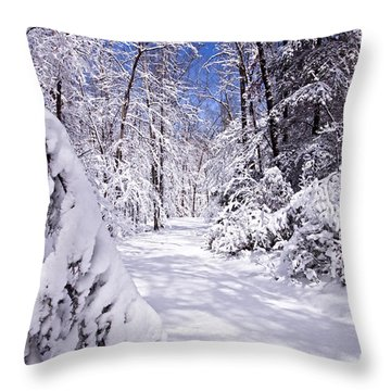 No Footprints Throw Pillow by Rob Travis