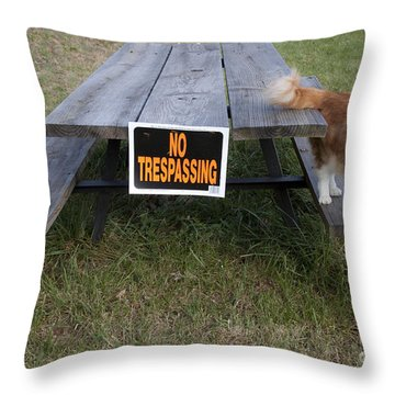 No Trespassing Throw Pillow by Jeannette Hunt
