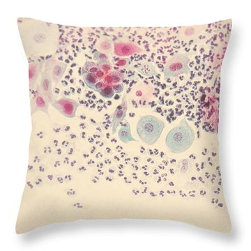 Normal Stellate Cells Throw Pillow by Science Source