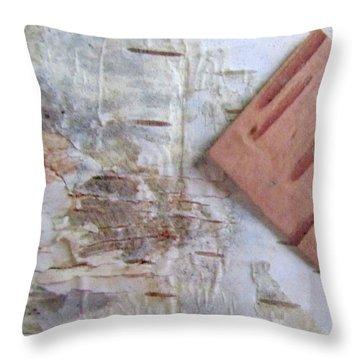 Normand's  Birch Bark  Throw Pillow by Danielle  Parent