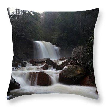 Throw Pillow featuring the photograph North Forks Waterfalls by Dan Friend