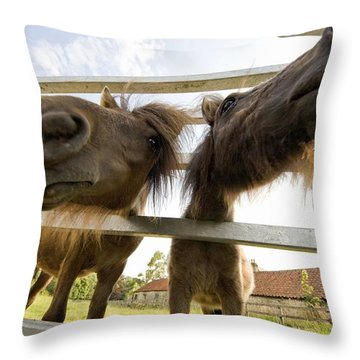 North Yorkshire, England Horses Looking Throw Pillow by John Short