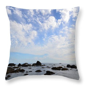Northern California Coast1 Throw Pillow by Zawhaus Photography