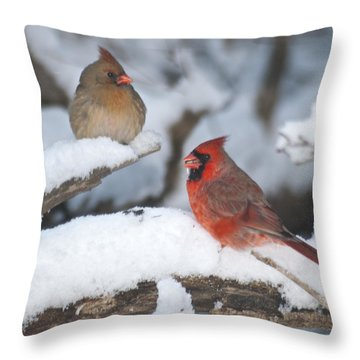 Northern Cardinal Pair 4284 2 Throw Pillow by Michael Peychich