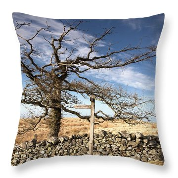 Northumberland, England A Leafless Tree Throw Pillow by John Short