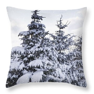 Northumberland, England Snow-covered Throw Pillow by John Short