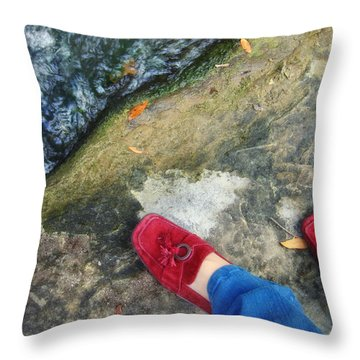 Not In Kansas Anymore Throw Pillow by Donna Blackhall