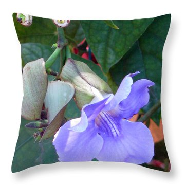 Nothing But Blue Sky Throw Pillow