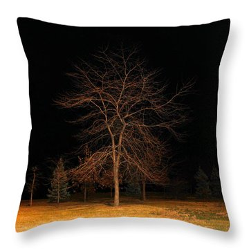 November Night Throw Pillow