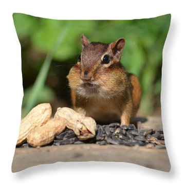 Now This Is A Breakfast Throw Pillow