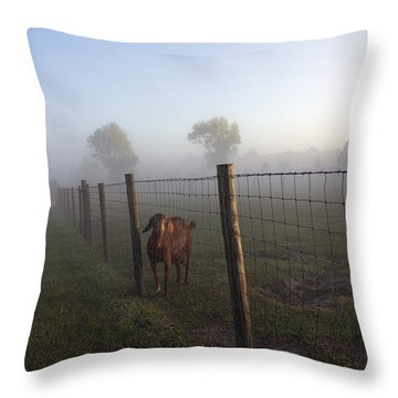 Throw Pillow featuring the photograph Nubian Goat by Lynn Palmer