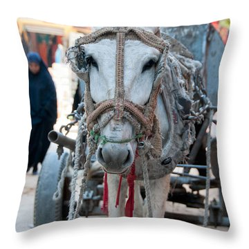 Nubians Nile Philae Throw Pillow