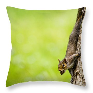 Nut Job Throw Pillow