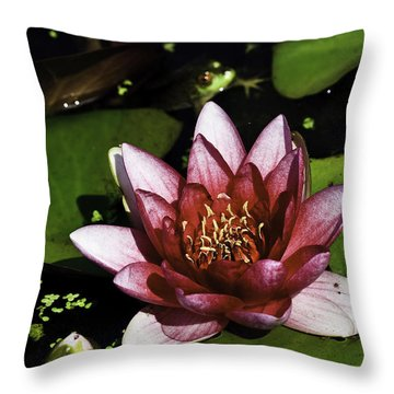 Nymphaea 'steven Strawn' Throw Pillow by Perla Copernik