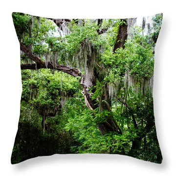 Oak And Moss Throw Pillow