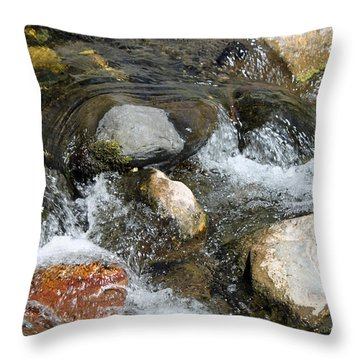 Oak Creek Throw Pillow by Lauri Novak