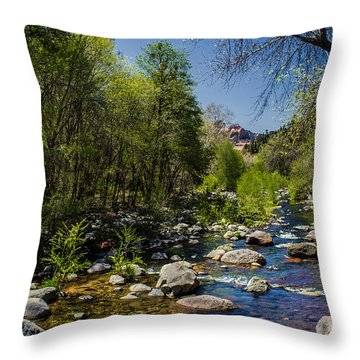 Oak Creek Throw Pillow by Robert Bales