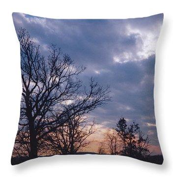 Oak In Sunset Throw Pillow