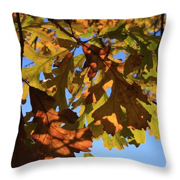 Oak Leaves With Backlighting Throw Pillow by Lyle Hatch
