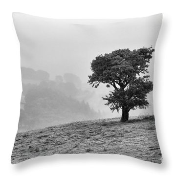 Oak Tree In The Mist. Throw Pillow by Clare Bambers