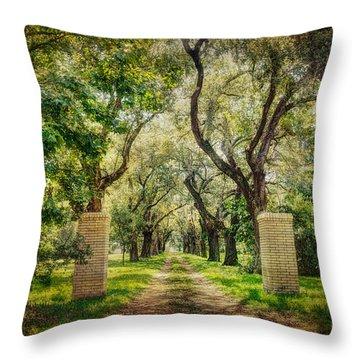 Oak Tree Lined Drive Throw Pillow by Joan McCool