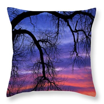 Throw Pillow featuring the photograph Obeisance by Jim Garrison