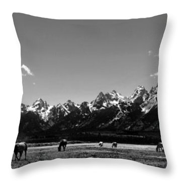 Throw Pillow featuring the photograph Oblivious by Dan Wells