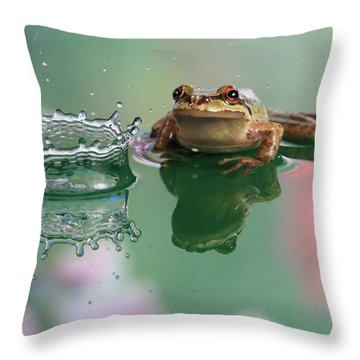 Observation Throw Pillow by William Lee
