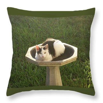 Occupied Bird Bath Throw Pillow