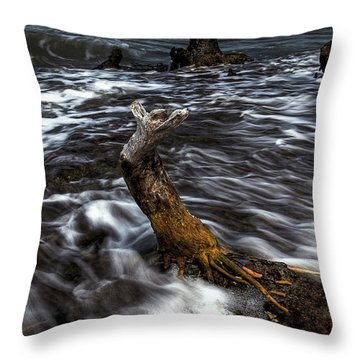 Ocean Flow Throw Pillow by Nick  Shirghio