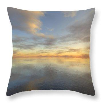 Ocean Throw Pillow by Mark Greenberg
