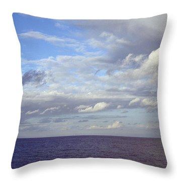 Ocean View Throw Pillow by Mark Greenberg