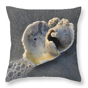 Ocean's Gift Throw Pillow
