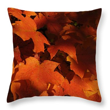 October Glow Throw Pillow by Luke Moore