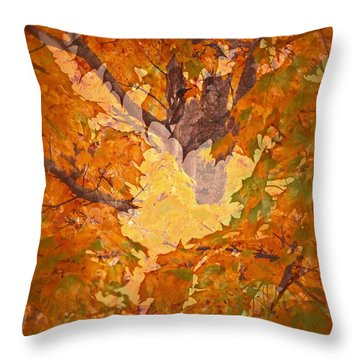 October In Washington Throw Pillow by Gwyn Newcombe