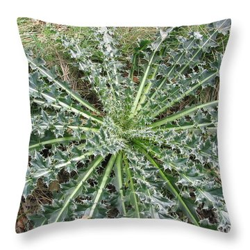 Throw Pillow featuring the photograph October Thistle by Mark Robbins