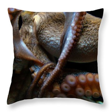 Octopus 1  Throw Pillow