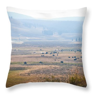 Throw Pillow featuring the photograph Oh Home On The Range by Cheryl Baxter