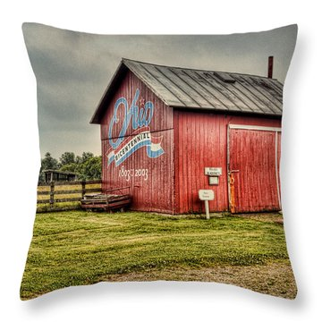 Throw Pillow featuring the photograph Ohio Barn by Mary Timman