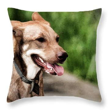 Oily Dog Throw Pillow