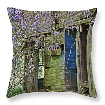 Old Abandoned House Throw Pillow by Susan Leggett