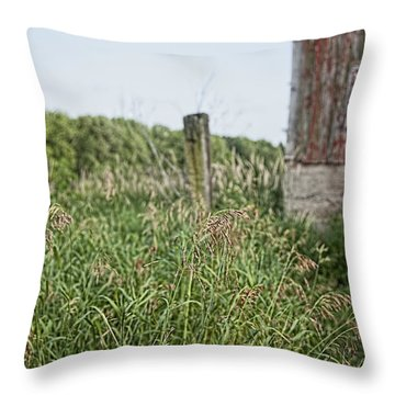 Throw Pillow featuring the photograph Old Barn 15 by John Crothers