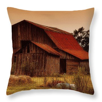 Throw Pillow featuring the photograph Old Barn by Lydia Holly